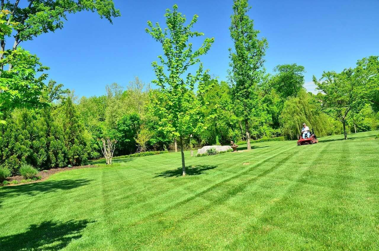 Lawn Care Cuyahoga Falls