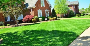 Lawn Maintenance Kent