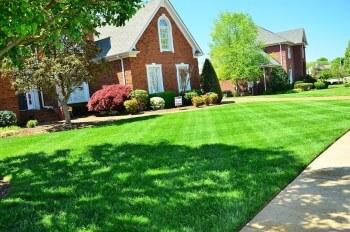 Lawn Maintenance Kent